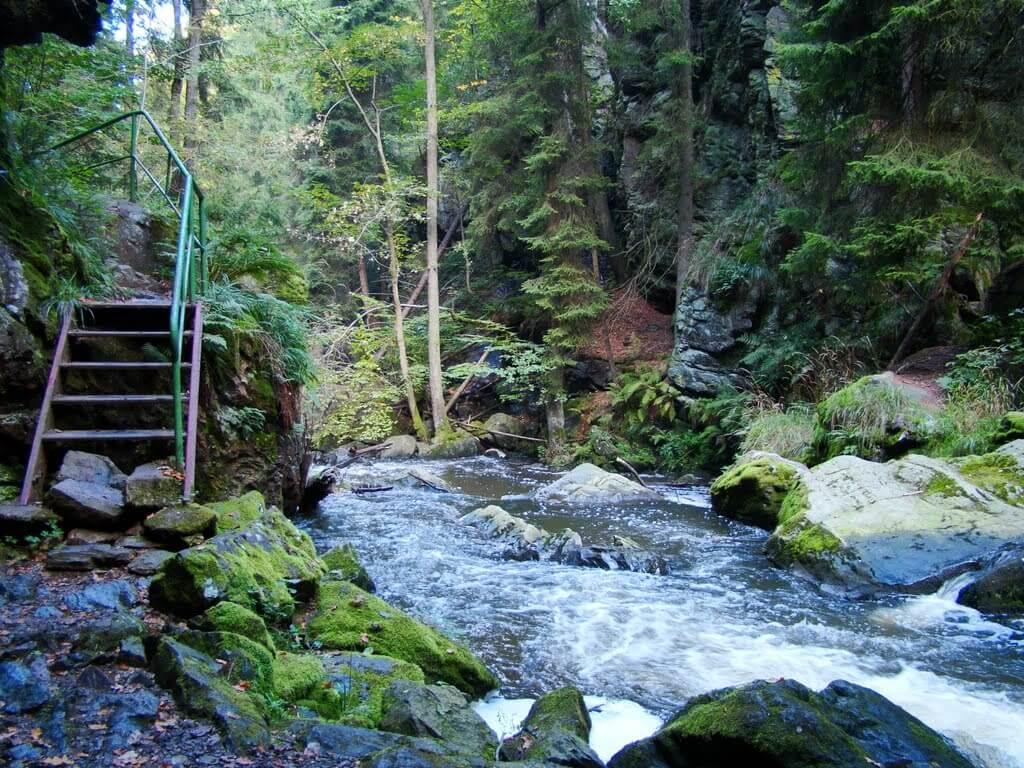 Údolí řeky Doubravy – přírodní rezervace Vysočina