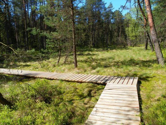 Dářská rašeliniště | Naučná stezka na Vysočině