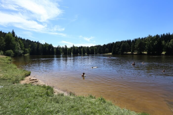 Rybník Chochol   Kam na výlet na Vysočině